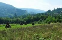 Панорама местности, фото 3