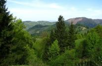 Панорама местности, фото 4