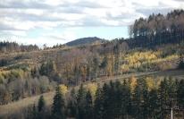 Горы Карпаты, Мигово:uk]Панорама гір, фото 3